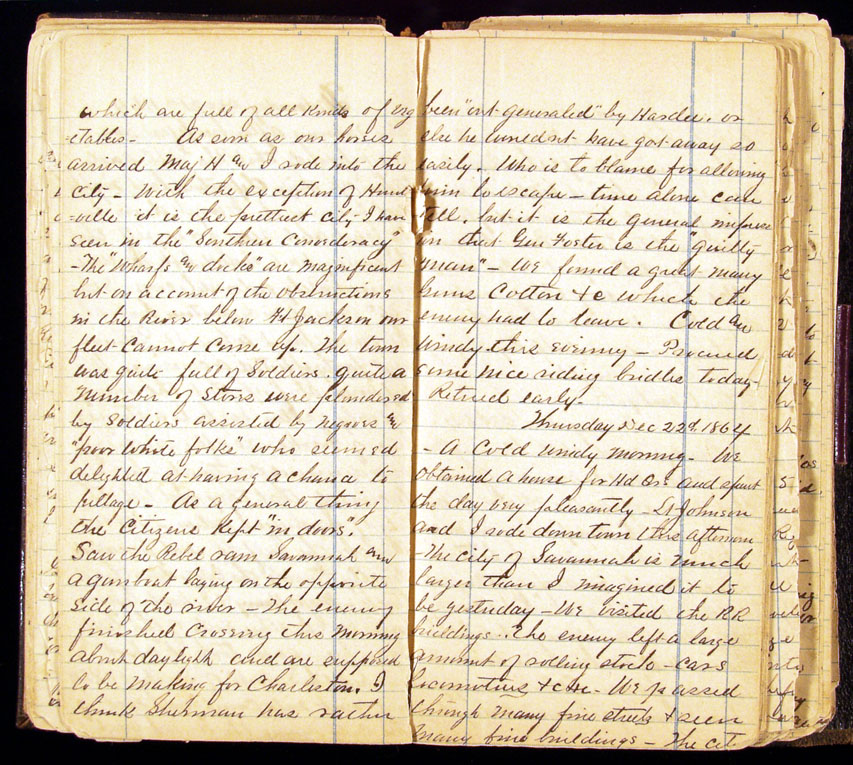 1960s diary entry 1960s diary entries his/135 kimberly schuchmann first diary entry: witness to the assassination of malcom x dear diary, today february 21, 1965 i witness the assassination of malcom x also known as malcolm little.